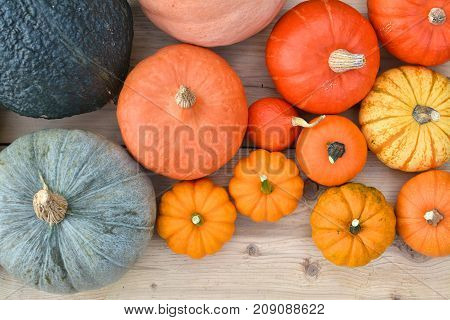 Different Varieties Of Pumpkins And Squashes