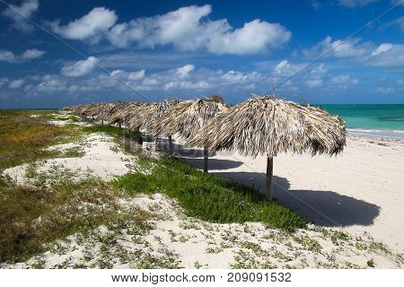 A row of Parasols on Caribbean tropical turquoise sand beach in Varadero Cuba