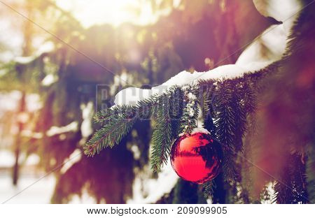 winter holidays and decoration concept - red christmas ball on fir tree branch covered with snow