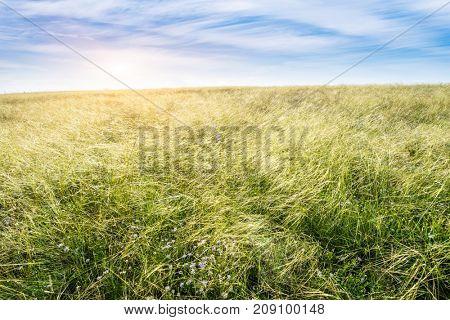 Grassland in China