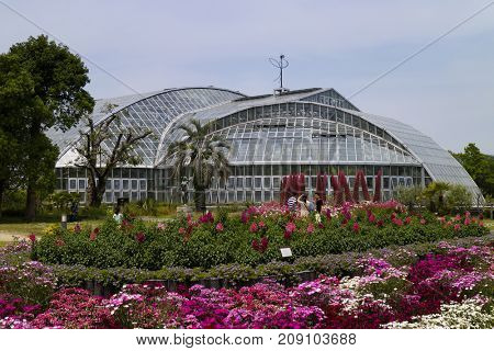Kyoto, Japan - May 21, 2017: Greenhouse in the Kyoto botanical garden in spring with flowering plants in front
