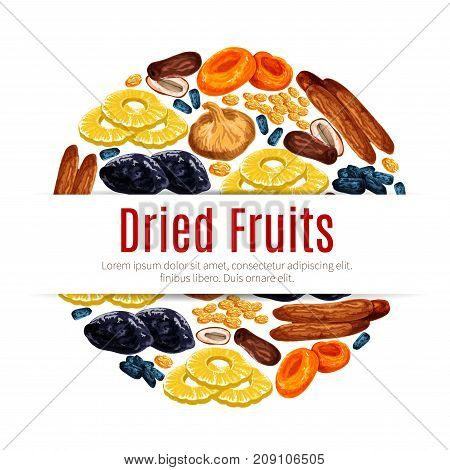 Dried fruit round label of raisins or grape, prune, apricot, fig, date, pineapple, plum and banana. Vector dried and candied fruits for healthy food, vegetarian snack, dessert product packaging design