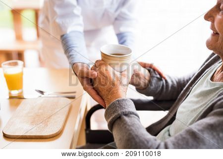 Unrecognizable health visitor and a senior woman during home visit. A nurse giving tea to an elderly woman sitting at the table. Close up.