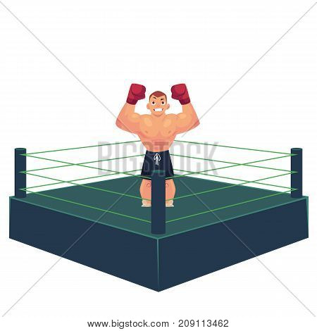 vector cartoon muscular strong handsome boxer man bare torso and chest standing with hands in red boxing gloves raised up smiling like winner in ring. Isolated illustration on a white background.