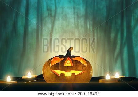 halloween pumpkin head with candle light in darkness spooky woods background halloween background