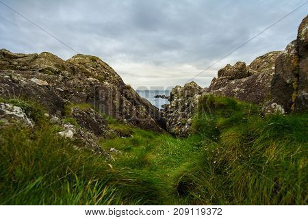Nord sea - coastline of Scotland - green plants and stones, horizontal