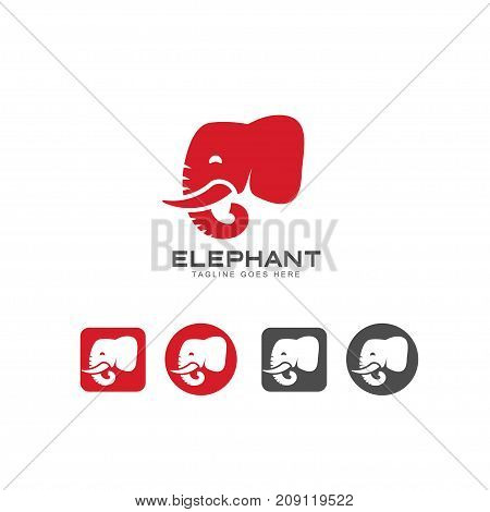 Elephant head icon and logo vector, elephant Identity logo design template for your company, Vector illustration