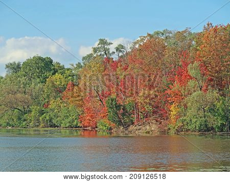 A variety of trees make for a colorful autumn at the edge Newburg Lake in Livonia Michigan.
