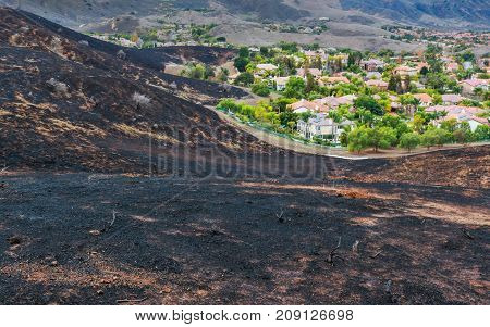 Aftermath of Wild Fire in California with Burned Hillside Ending Right at Edge of Neighborhood Homes