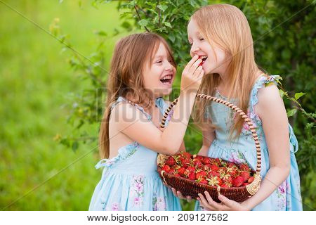 Happy little sisters have fun feeding each other organic strawberries in the garden. Warm summer day. A delicious vitamin diet. Family active rest. Friendship of sisters. Relationship in the family.