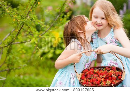 Happy little sisters with the basket of organic strawberries in the garden. Warm summer day. A delicious vitamin diet. Family active rest. Friendship of sisters. Relationship in the family. Sisters kiss.