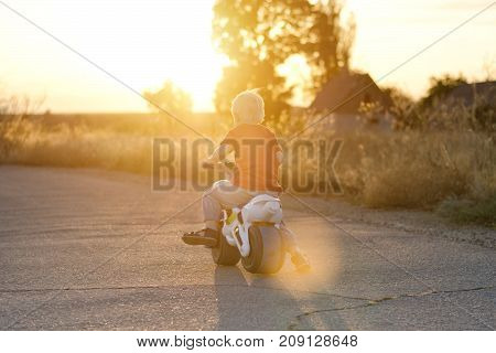 Boy On Toy Bike Rides On The Road. Summer, Sunset. Back View