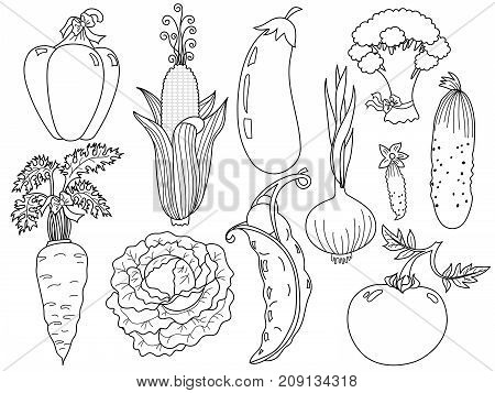 Vector black and white vegetables set. Set includes carrot, cabbage, tomato, onion, cucumber, carrot, corn, eggplant, pepper, broccoli, peas and cabbage. Vector veggies. Vegetables vector illustration