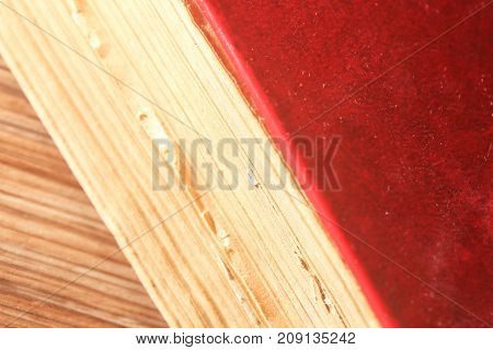 Red book on color background, education . Photos in the studio