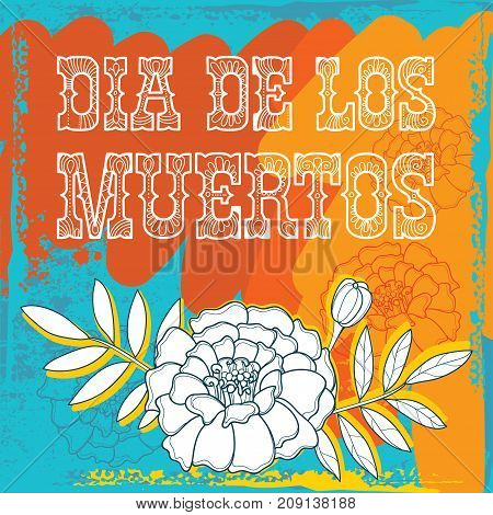 Vector placard with outline white Tagetes or Marigold flower for Mexican Day of the dead or Dia de los Muertos on the grunge background. Ornate Tagetes and foliage in contour style.