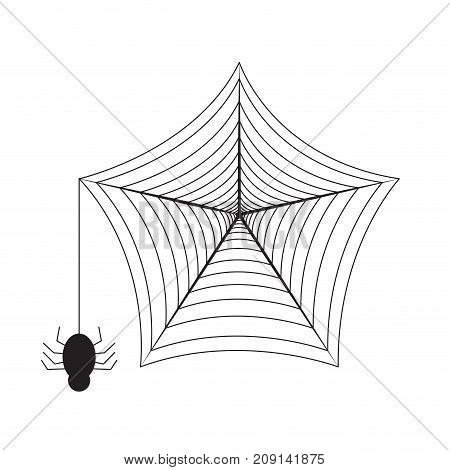 Isolated spider web on a white background, Vector illustration