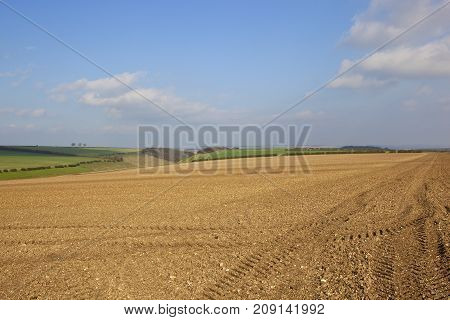Hilltop Cultivated Field