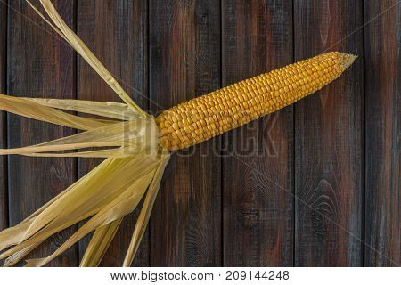 Corn On The Cob. Sweet Corn On The Table