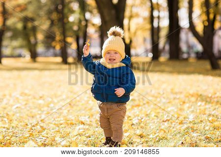 happy little boy in the sun in autumn, in the foliage and yellow cute hat holding a leaf of a tree