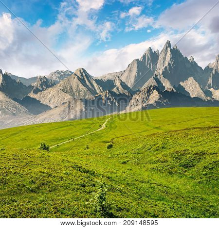 Grassy Slopes And Rocky Peaks Composite