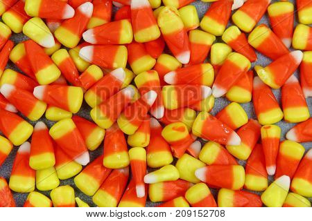Yellow and orange Corn candy background filling the frame