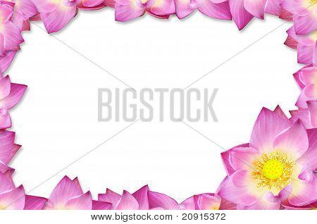 Pink Lotus Frame Background.