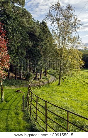 A country path and fence with blue sky