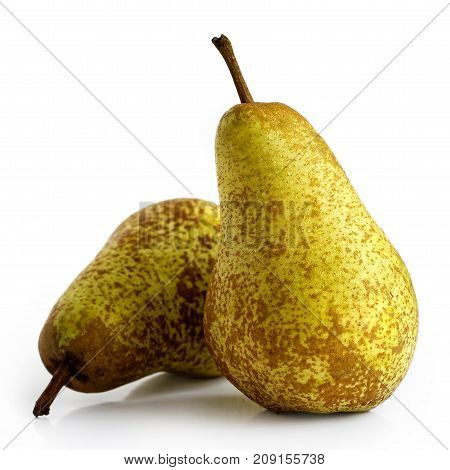 Two abate fetel pears isolated on white. poster