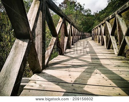 Wood bridge in the forest. Scenic rural landscape