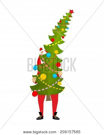 Santa Carry Big Christmas Tree. Claus And Huge Spruce. Large Fir. New Year Vector Illustration