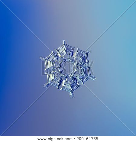 Real snowflake macro photo: star plate snow crystal with fine hexagonal symmetry, six short, broad arms, glossy surface and flat central hexagon. Snowflake glittering on blue gradient background.