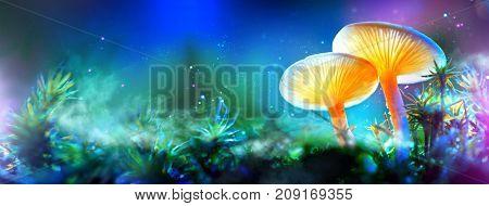 Mushroom. Fantasy Glowing Mushrooms in mystery dark forest close-up. Beautiful macro shot of magic mushroom, fungus. Border art design. Magic scene, light in night forest. Wide banner