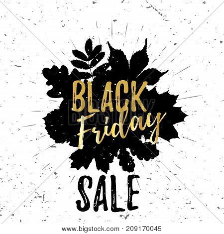 Black Friday golden lettering typography design with black leaves and burst on a old textured background. Vector illustration for flyer, poster, sign, banner, discount card, promotion, web