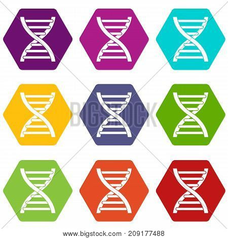 DNA icon set many color hexahedron isolated on white vector illustration