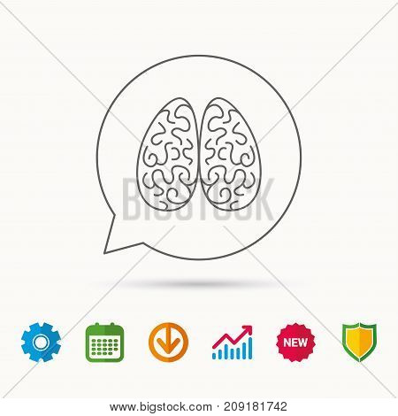 Neurology icon. Human brain sign. Calendar, Graph chart and Cogwheel signs. Download and Shield web icons. Vector