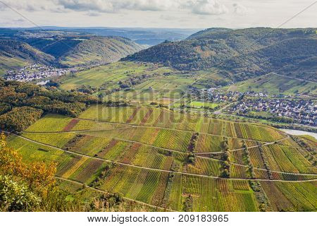 Autumnal Moselle Landscape At Bremm Calmont Region Germany