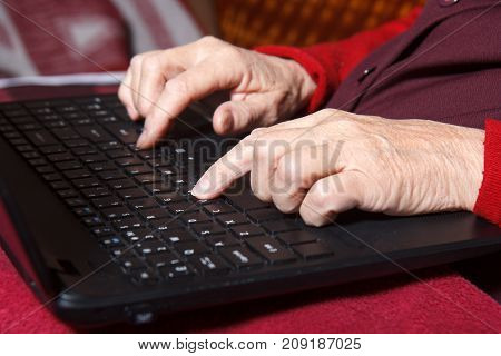 old woman's hands on the computer keyboard