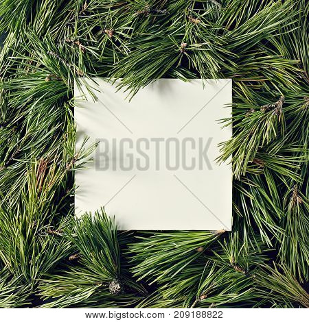 Creative background of pine branch with white paper card. New Year and Merry Christmas Concept. Flat Lay