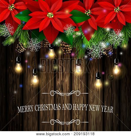 Christmas decoration and greeting card with evergreen trees with poinsettia christmas lights isolated on wooden wall Vector