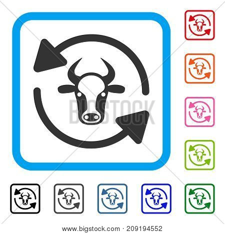 Refresh Cow icon. Flat grey iconic symbol in a light blue rounded rectangle. Black, gray, green, blue, red, orange color additional versions of Refresh Cow vector. Designed for web and software UI.