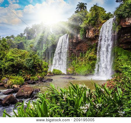 Two rapid waterfalls from the Iguazu Falls. Hot tropical sun illuminates the rumbling waterfalls. The concept of extreme and ecological tourism