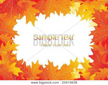 autumn leaves, vector frame illustration