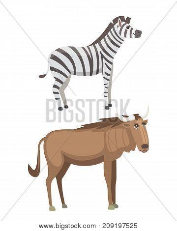 African animals cartoon vector set. zebra, safari isolated illustration.