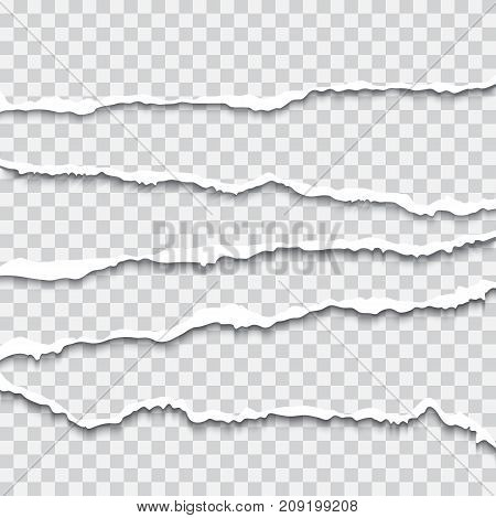 Realistic ripped paper shadow vector illustraionisolated on transparent background. Design element for advertising and promotional message, web banner, header, dividers and flyer