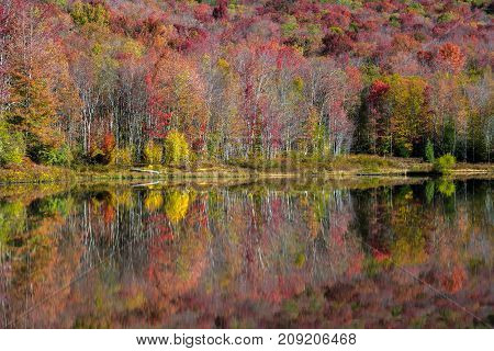 Colorful autumn foliage reflects on the calm surface of a lake in West Virginia's Canaan Valley resort area.
