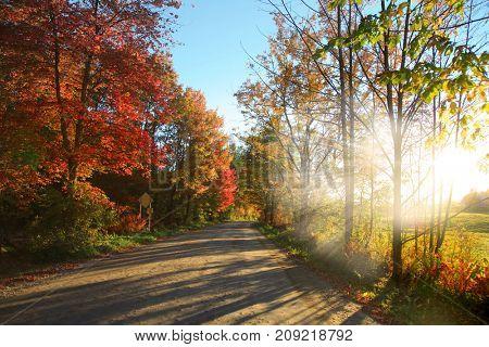 Rural road in Vermont against sun set
