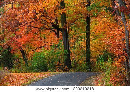 Scenic trail in Michigan in autumn time