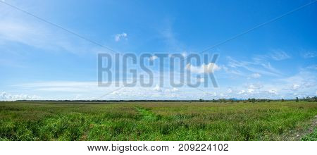 Fresh scenery countryside with fields natural and clear sky background clean summer landscape panorama Ideal as for background and nature design