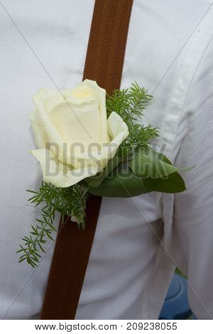 Elegant Groom In Brown Costume, Bow-tie And Suspenders