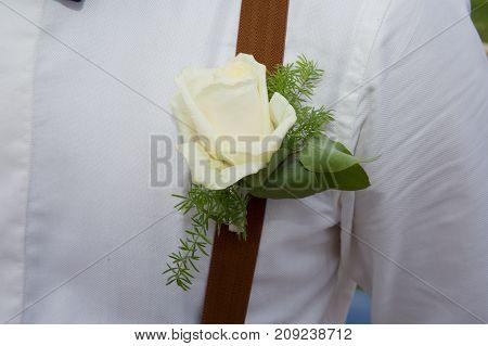 Man In Suspenders. Handsome Groom At Wedding Day